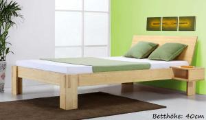JAVA Bambusbett mit Rückenlehne Hainan 160x220cm